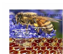Joshual Land Pure Honey