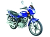 125cc Motorcycle / Dirt Bike / Scooter Uj125 Vi