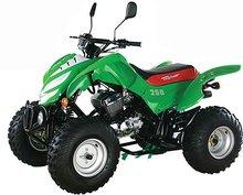 250cc ATV-Model ATV-24
