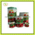 conservas de hortalizas chino