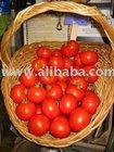 Organic Fruit & Vegetable Powders