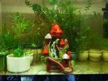 Spare Parts To Decorate In The Aquarium; Ornament Fish