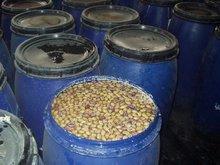 Olives (Kalamata, Picual, Dolcy, Manzanello)