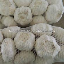2013 garlic price in China