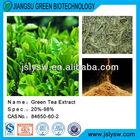 Polyphenol/Catechins/Green tea extract powder