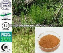 Horsetail P.E./Equisetum arvense L/herba equiseti arbensis/ marestail extract/Bottlebrush extract / meadow pine extract