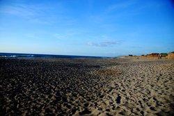 Magnetite Sand