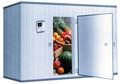 البطاطا/ الملفوف/ الأرز/ القمح/ غرفة تخزين الأغذية الباردة