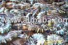 fresh black tiger shrimps and inkfish filet