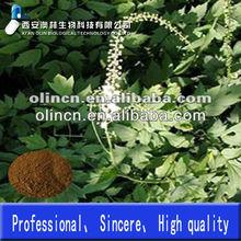 Black Cohosh Extract saponins 2.5%
