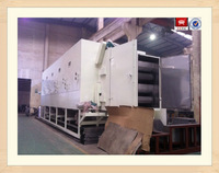 Conveyor mesh belt drying equipment for drying fruits and vegetables