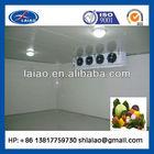 coldroom/ vegetables cold room