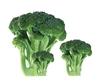 Quick Frozen Broccoli