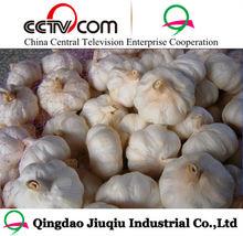 fresh vegetable/garlic price in china 2013 /natural garlic