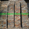 exterior wall coating/exterior wall stone slate coating