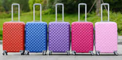 leisure luggage parts