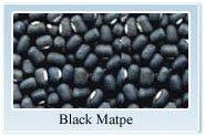 black Matpe beans