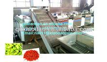 washing machine ro raisin,raisin processing machine