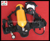 RHZKF 5/30 Self-Contained Open-Circuit Compressed Air Breathing Apparatus
