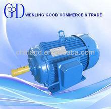Y series 50/60hz electric motor