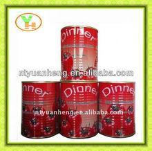 70-4500g canned tomato paste for Africa precio+de+la+pasta+de+tomate+en+lata