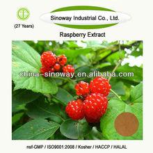 raspberry p e