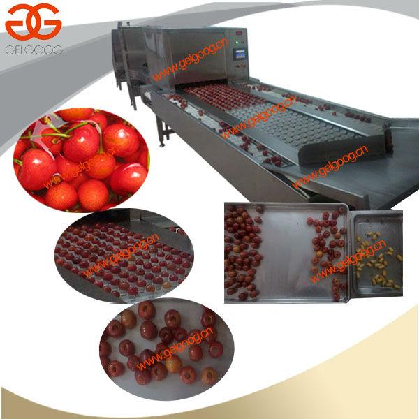 cherry pitter machine