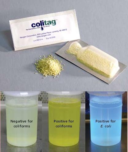 Colitag presença/ ausência ( p/ um ) de água kit de teste