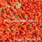 00% natural 2013 high quality ningxia organic goji berry