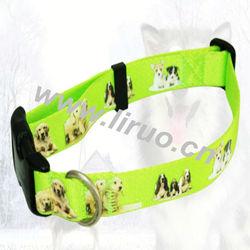 Green Pet Dog Collars