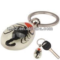 Fashionable Scorpion Amber Keychain for Key Collection Handbag Decoration