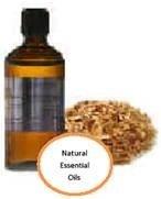Muhuhu Essential Oil (Brachyleana Hutchinsii)