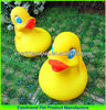 PVC Swimming Duck for Baby Bath