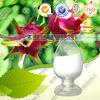 Natural Pitaya extract powder supplier
