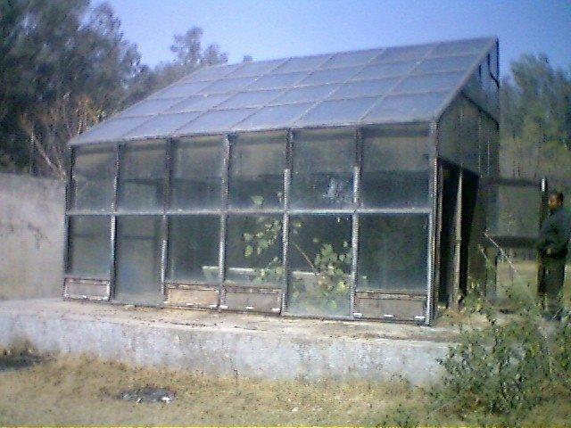 Secador solar de madeira