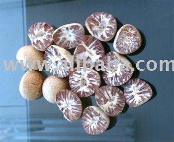 Beetle Nuts