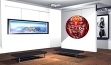 Art & Picture Hanging Systems