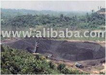 Thermal/Steam coal