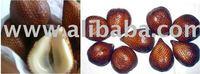 Salak - Fresh Snake Fruit