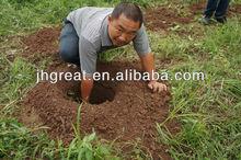Profesional motoperforadora GR520 52cc común agricultura herramientas