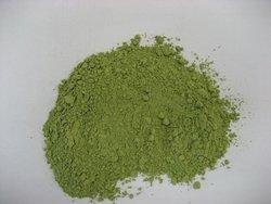 Green Onion Powder