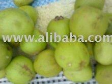 shea nuts fruits