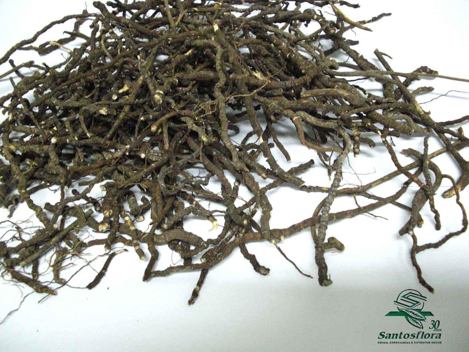 Ipeca raiz ( Cephaelis ipecacuanha ) - oferta especial