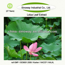 lotus leaf plant extract