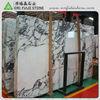 Natural Stone Arabescato Faniello White marble