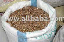 Castor Seeds,Oil, and plantation