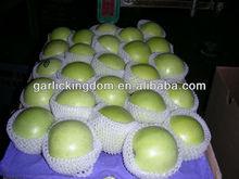 sell 2013 green gala apple