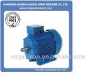 Y2 Series 3 phase 20hp electric motor