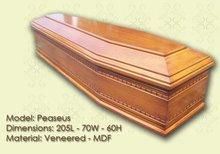 Peaseus coffin