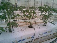 coco peat grow bags